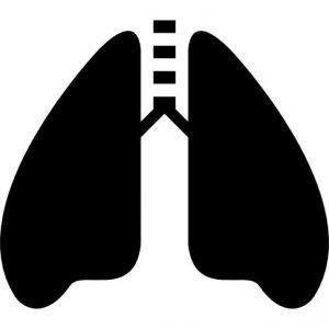 艾乐替尼延缓晚期肺癌进展